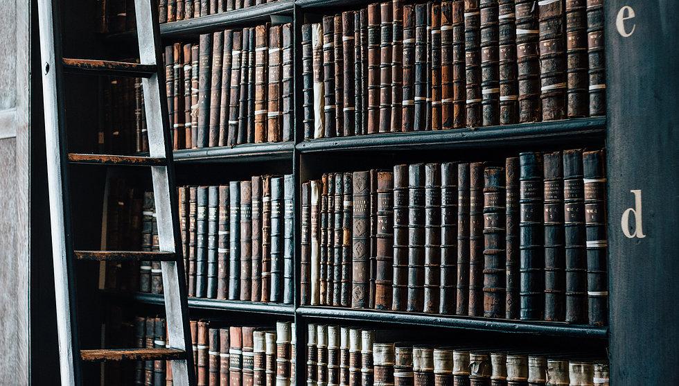 Stéphane Sangral Bibliotèque de vieux libre